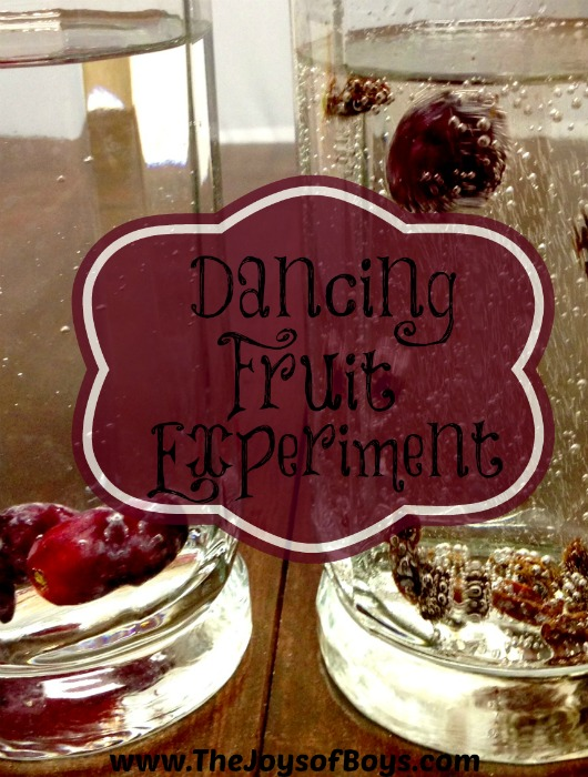 Dancing Fruit Experiment