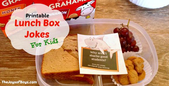 Lunch Box Jokes for Kids