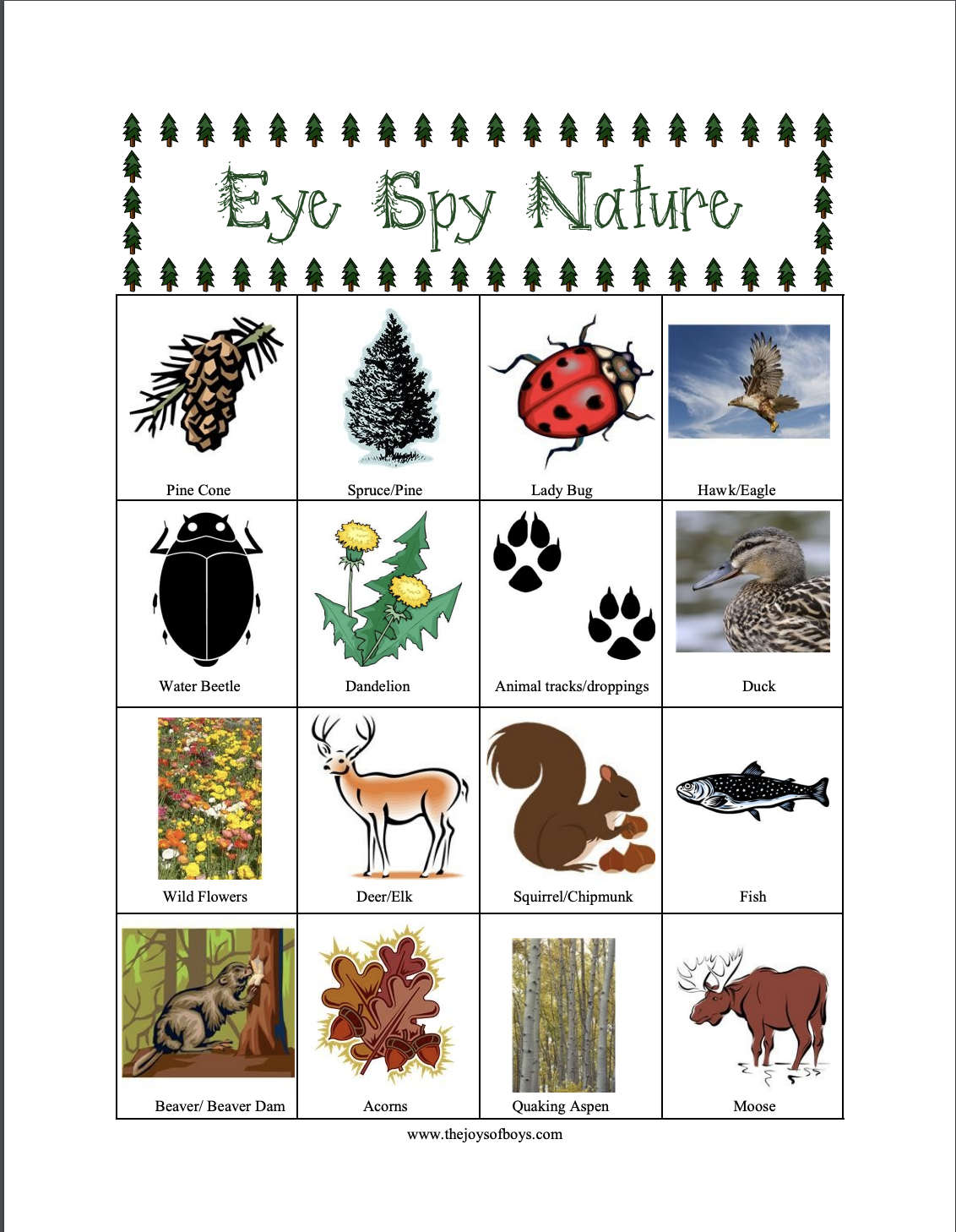 Eye-Spy Nature Scavenger Hunt