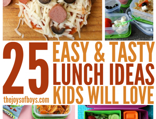 25 Easy Lunch Ideas Kids Will Love