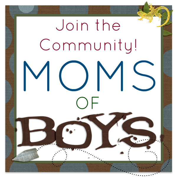 Moms of Boys community graphic