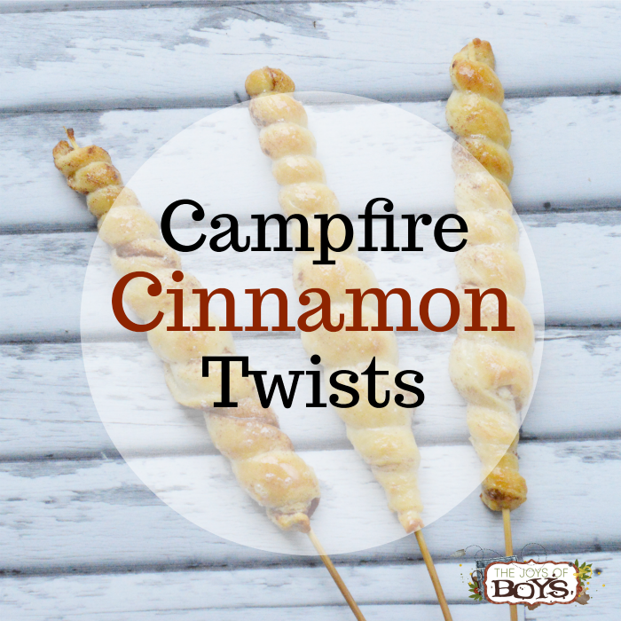Campfire Cinnamon Twists