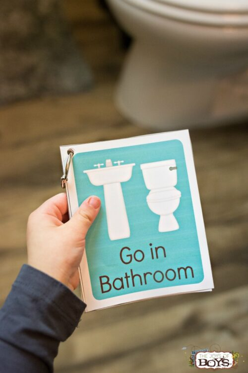 Potty Training Cards Visual Schedule