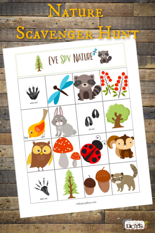 This Nature Scavenger Hunt is a fun way to get kids to be observant while out in nature. Take it camping or on your next hike.