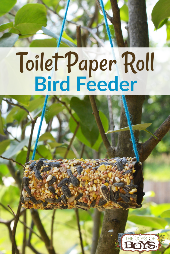 DIY Bird feeder made from a toilet paper roll, peanut butter and seeds. Hung in a tree with yarn.